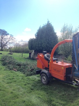 Conifer reduction and wood chipping