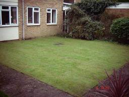 Lawn after picture