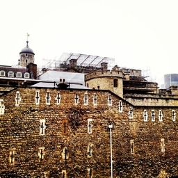London Network Scaffolding Ltd - Tower of London
