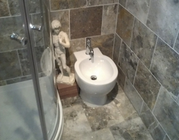 Bathroom 003
