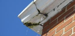Leaking Gutter Joints