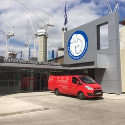 Our van at Battersea cats and dogs home in London