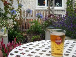Time for beer now that the garden's finished!