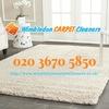 Wimbledon Carpet Cleaners