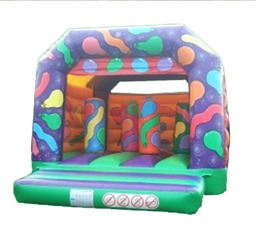 Our Adult Family Bouncy castle