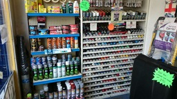 Car Paints and Body Products