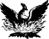 The Phoenix Personal Training