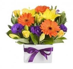 Floral Fusions Florist