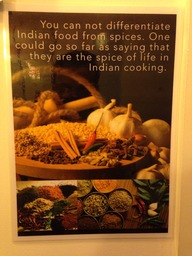 A modern taste of india