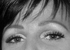 Ilah brows