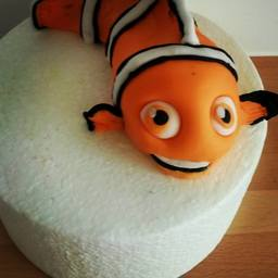 Finding Nemo Topper