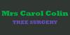 Mrs Carol Colin
