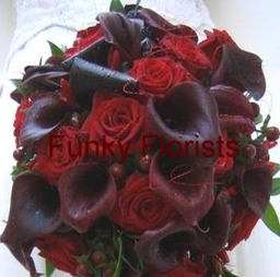 Deep reds with claret posy
