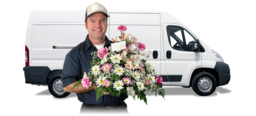 Middlesbrough Flower Delivery