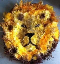 Lion Funeral Tribute