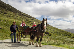 The Gap of Dunloe Day Tour