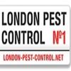 London Pest Control