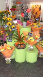 Themed Bouquets, Fresh Daily