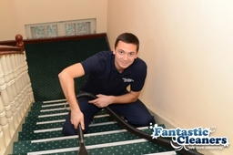 Carpet and rug cleaning services