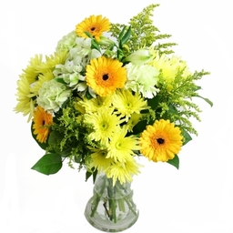 Send Yellow Flowers £27.50 + £5.00 delivery