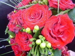 Rose Detail -- Brides Bouquet