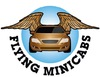 Flying Minicabs