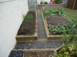 Path & raised bed
