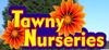 Tawny Nurseries