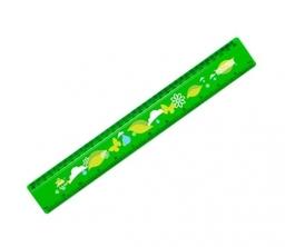 30cm Ruler T1
