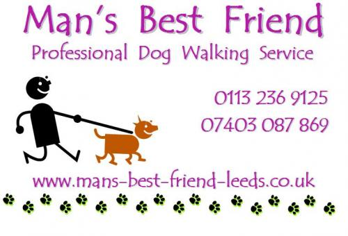 Man39s best friend professional dog walking service 16 for Professional dog walking service