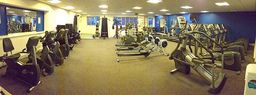 The gym