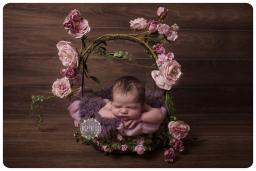 newborn photography loughborough