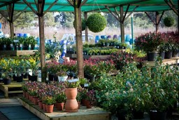 The Garden Centre at J and L