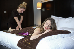 CityLux Luxury Mobile SPA Massage in London