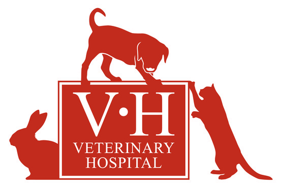 The Veterinary Hospital in 175 Newport, Lincoln ...