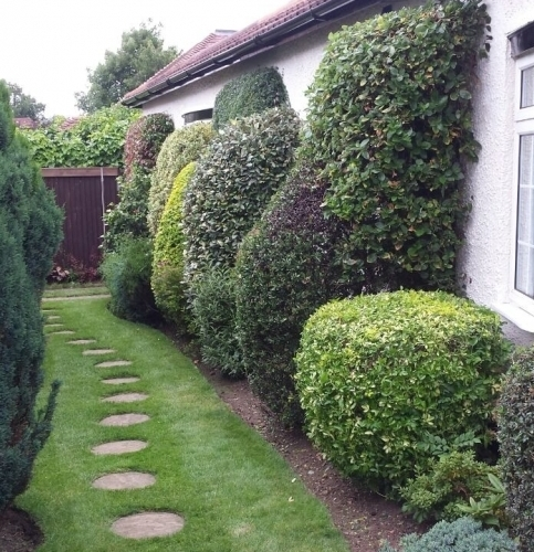 A h garden services in suite 106 394 muswell hill for Garden maintenance london