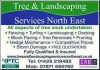 Tree Landscaping Services Northeast