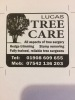 Lucas Tree Care