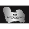 Ross's Rascals