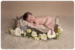 loughborough newborn photos