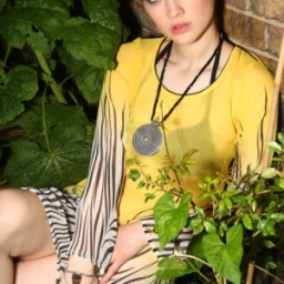 Yellow Tiger Stripe Chiffon Dress