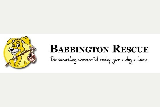Babington Dog Rescue