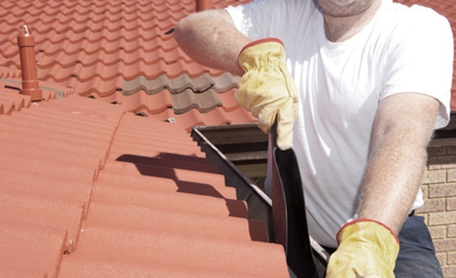 Details For Rob Aimable Roofing Building Services In 163