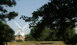 Orsett Mill Copes