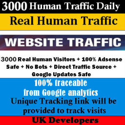 website traffic for your website