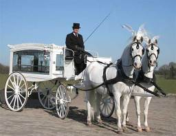Horse Drawn Hearses