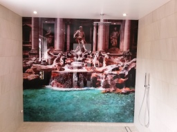 Printed glass shower