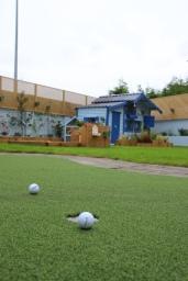Artificial grass Lucan, County Dublin