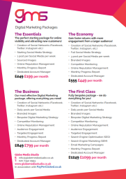 Globe Media Studio Digital Marketing Packages