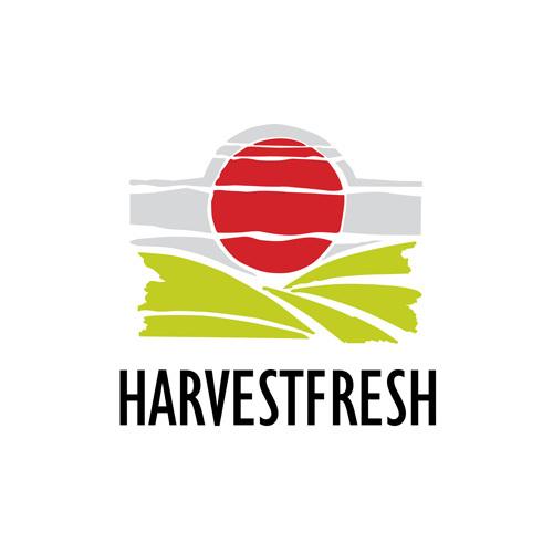 0livedale johannesburg logo designers business card flyer and description business profile reheart Choice Image
